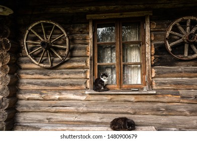 Photo of two cats resting outside an old log cabin.