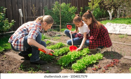 Photo of two teenage girls with mother working in backyard garden