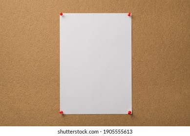 Photo of vertical clear sheep of paper attached with red pins to the wooden board
