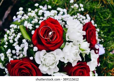 photo wedding rings