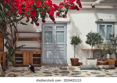 Photo of the white building facade in Mykonos and flowers