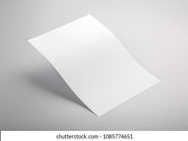 Foto von weißem Kopfkopf einzeln auf grauem Hintergrund. Vorlage für die Markenidentität. Für Grafikdesigner Präsentationen und Portfolios. Letterhead einzeln auf Grau. Weißer Kopfsalat verspottet.