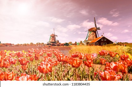 Photo of windmill in Holland at sunset