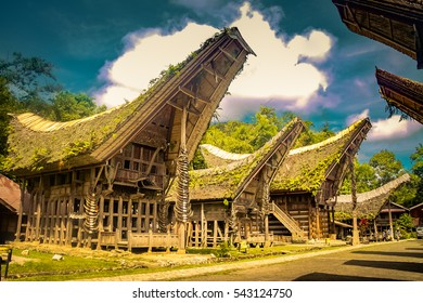 Photo of wooden ancestral houses with plants on typical boat-shaped and saddleback roofs in Lemo, Toraja region in Sulawesi, Indonesia.