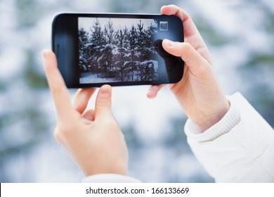 Photo in Woods