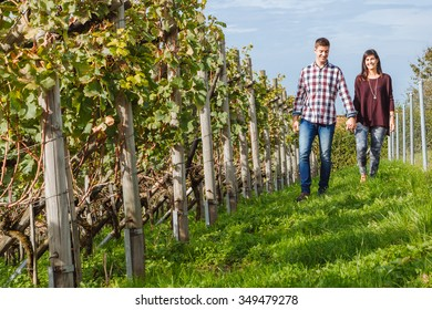 Photo of a young couple holding hands and walking through a vineyard.