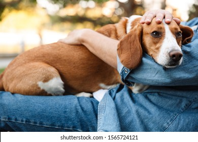 Photo of young man in denim clothes sitting on bench in park with his canine dog