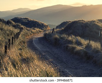 Photograph of a footpath running through sand dunes taken during early morning just after sunrise.