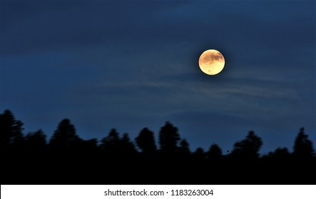 photograph of full moon of blood