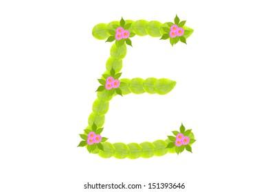 Photograph of Leaves Letter  E