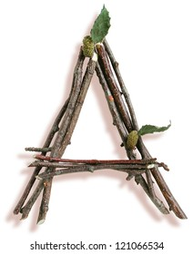 Photograph of Natural Twig and Stick Letter A