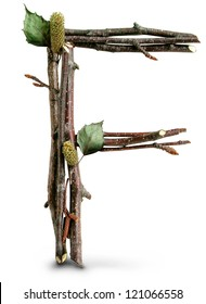 Photograph of Natural Twig and Stick Letter F