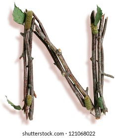 Photograph of Natural Twig and Stick Letter N