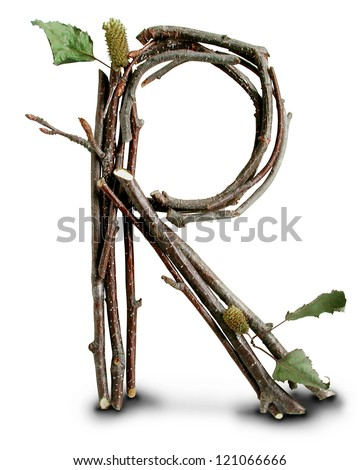 Photograph of Natural Twig and Stick Letter R
