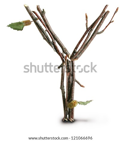 Photograph of Natural Twig and Stick Letter Y