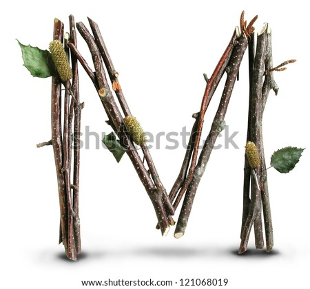 Photograph of Natural Twig and Stick Letter M