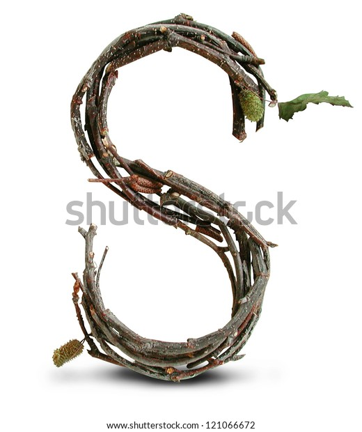 Photograph of Natural Twig and Stick Letter S