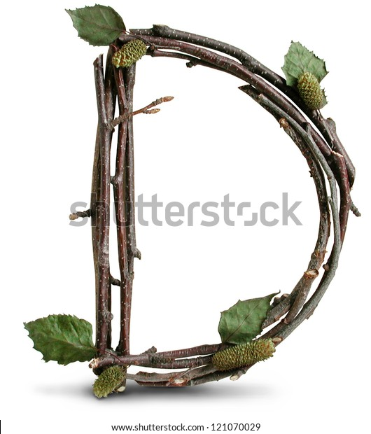 Photograph of Natural Twig and Stick Letter D