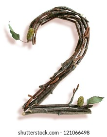 Photograph of Natural Twig and Stick Number 2