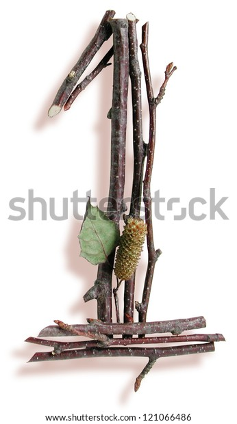 Photograph of Natural Twig and Stick Number 1