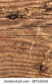 Photograph of an old, obsolete, roughly treated, weathered, cracked, knotted Pine plank grunge texture, with rusty nail driven in.