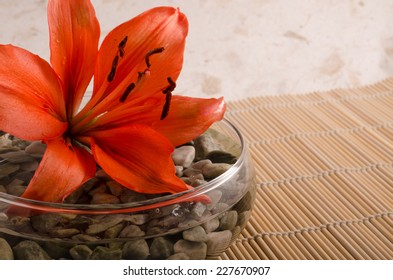 A photograph of an orange colored Lily resting in a glass bowl filled with rocks and water against rice paper and bamboo.