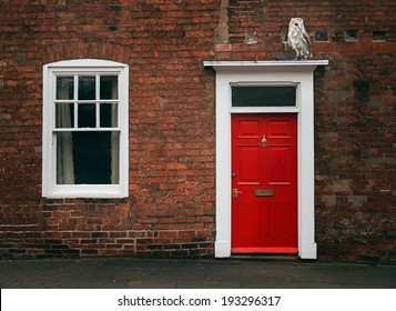 Photograph of a Red door and an owl