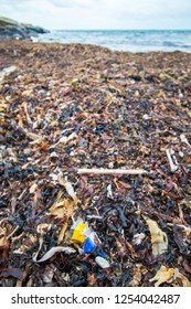Photograph of seaweed and plastic rubbish washed up on a wild beach, Isle of Man, UK
