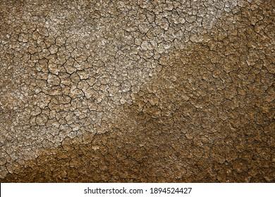 A photograph of the soil of the drained salt farm