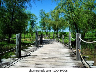 Photograph taken at the Blount Cultral Park, located in Montgomery, Alabama / A Bridge to Cross