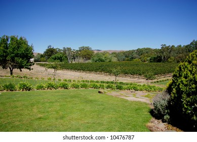 Photograph taken at Grant Burge's Winery in the Barossa Valley (South Australia).