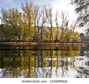 Photograph of tree mall in autumn reflected in the river,peace, harmony, tranquility, serenity, meditation, transcendence, relaxation, balance,