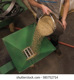 A photograph of whiskey stiller pouring grains into a hopper to begin the mashing process of creating whiskey. He's pouring certain grains to make bourbon.