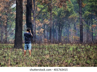 photographer in forest