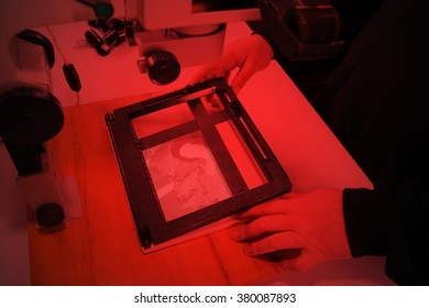 Photographer in the laboratory with  enlarger projects the image from a negative on photo paper. Lighting red lamp.