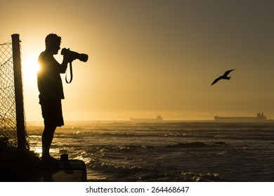 Photographer photographing birds at sunset