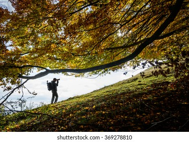 Photographer taking pictures over fall tree. Man taking pictures over fall tree branches leaves on mountain colorful forest.