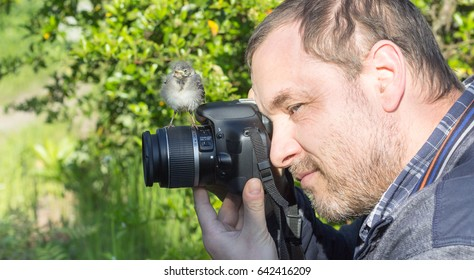 A photographer with a young songbird on his camera / bird and photographer / songbird