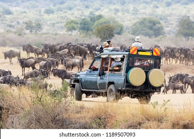 Photographers, on a safari vehicle in the Masai Mara, photograph the annual Great migration of the white-bearded wildebeest.
