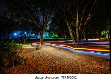 Photographic light trails in the park.