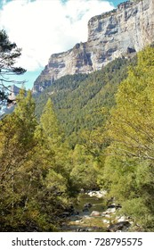 Photographs of landscapes of the Ordesa and Monte Lost National Park, beech forests, Huesca, Aragon, Spain,