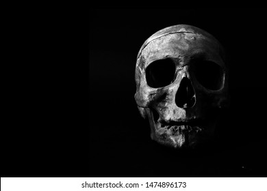 photography of human skull in black
