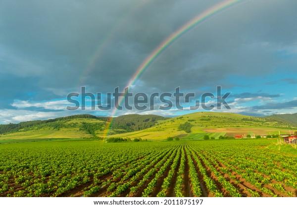 photography-rainbow-over-field-countrysi