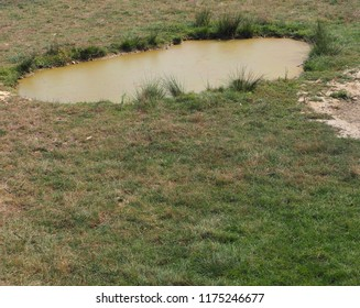 Photography that is showing some small pond