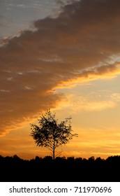 Photos beautiful sunset over the field on a summer evening