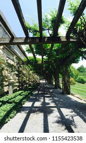 Photos from the Biltmore estate in North Carolina