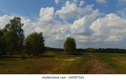 photos from the European landscape background rural field in summer on blue sky background and white clouds as the source for design, advertising, print, decoration, poster, photo shop, interior