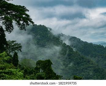 Photos of Fog and mountains at Khao yai National Park , Thailand.