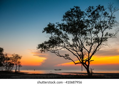 Photos silhouette tree leaf slow shutter speed to wind swaying the evening sky at the beach.