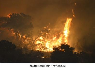 Photos from the Thomas Fire in Ventura County, California.